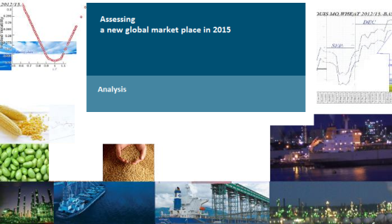 Commodity Firms Asessing a new global market palce in 2015